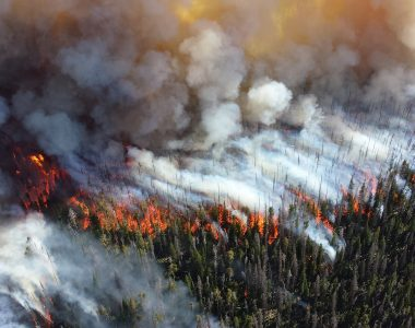 Washington wildfire resources
